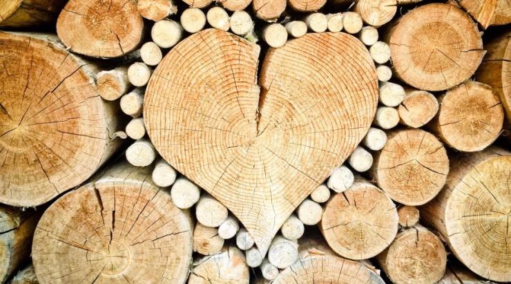 Szociális tűzifa támogatás 2021/2022.